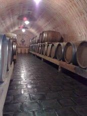 Barrique barrels, wineries Stanislav Mádl, Velké Bílovice